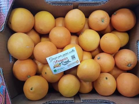arance-navel-dolcissime.jpg AranciaDrink